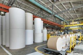 Pulp & Paper Mills